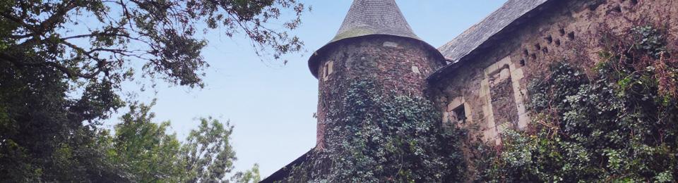 Chateau du Fresne Faye d'Anjou